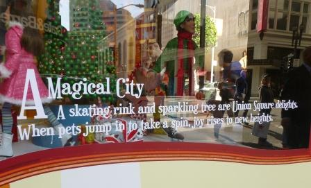 SF 12 Magical City window